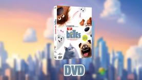 Le DVD Comme des Bêtes