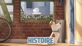 L'Histoire de Comme des bêtes