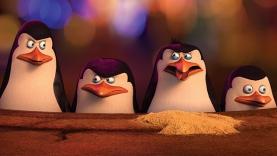 Les Pingouins de Madagascar - Histoire