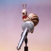 Tous en scène - escargot