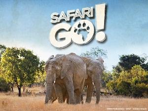 Battles Safari Go !