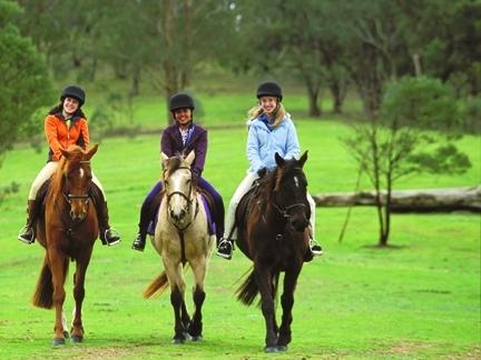 Pr sentation des s ries - Grand galop le cheval volant ...