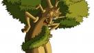 Le Vieux Chêne en pleine explication