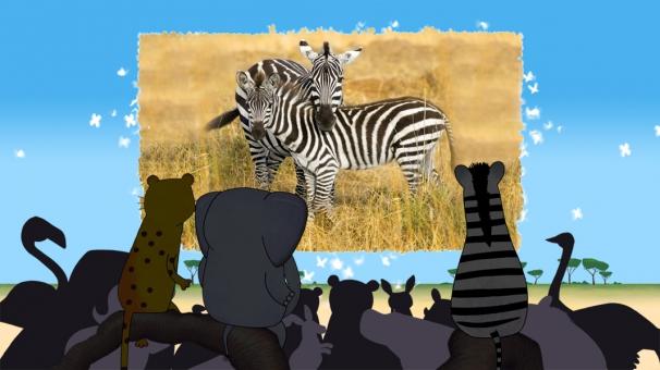 Les animaux de la savanne regardent un documentaire sur les zèbres