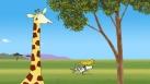 Au loin Bo et Karla font la course dans la savanne