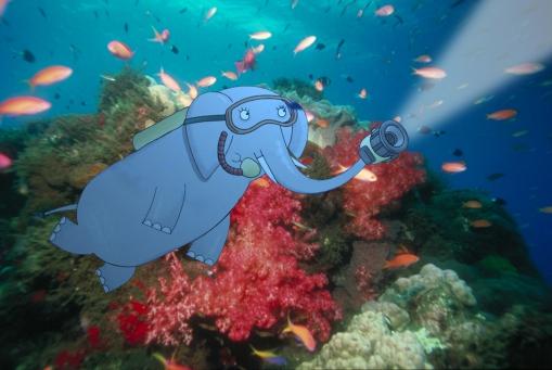 Mama fait de la plongée sous-marine