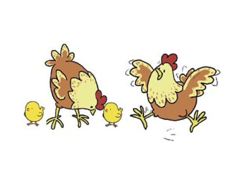 Animaux manon h ros tiji - Poules dessin ...