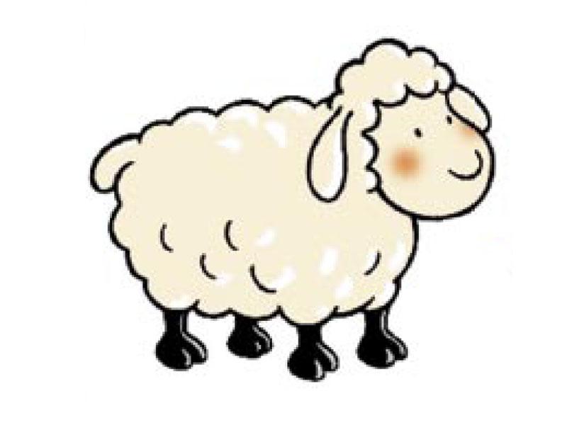 Qu elle estes n these pas dimag correspond recherch d - Stickers mouton chambre bebe ...