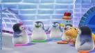 Les Ozie Boo réunis autour du morse